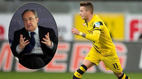 Florentino Perez: Real mua Marco Reus để làm gì?