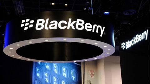 Microsoft sẽ mua BlackBerry với giá 7 tỷ USD
