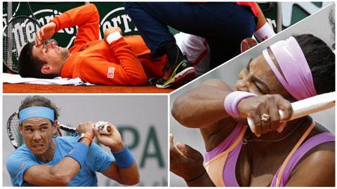 Nadal, Djokovic và Serena Wiliams đi tiếp, Wozniacki dừng bước tại vòng 2 Roland Garros