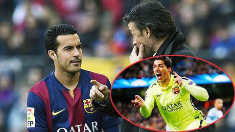 Hàng công Barca: Pedro có thể đá chính thay Suarez
