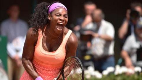 Serena Williams gặp lại Safarova ở chung kết Roland Garros