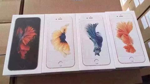 iPhone 6s vàng hồng và vỏ hộp trong chùm ảnh thực tế trước khi mở bán