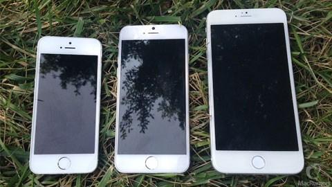 iPhone 6 màn hình 4.7-inch (giữa) và 5.5-inch (bên phải) so sánh với iPhone 5S (bên trái)