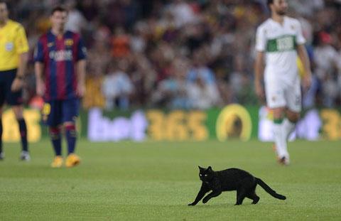 """Barca đón """"vị khách không mời"""" trong trận mở màn chiến dịch 2014/15"""