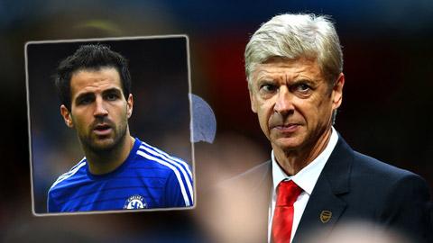 Wenger không hối hận vì từ chối mua lại Fabregas
