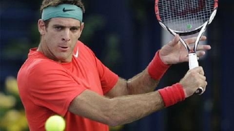 Del Potro sẽ trở lại ATP World Tour vào năm tới