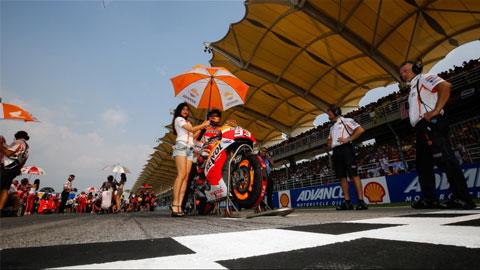 MotoGP chặng 17: Marc Marquez tìm lại chính mình