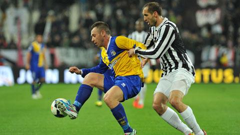 21h00 ngày 9/11, Juventus vs Parma: Duyên nợ Parma!