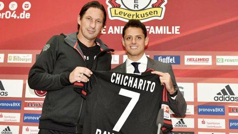 Những tân binh như Januzaj (ảnh nhỏ) hay Chicharito được kỳ vọng sẽ thổi một làn gió mới vào Bundesliga