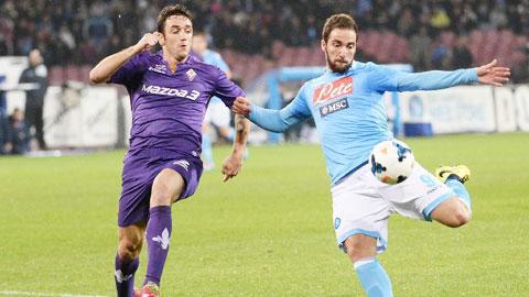 20h00 ngày 18/10, Napoli vs Fiorentina: Đỉnh cao là đây (Trực tiếp: BTV5)